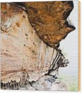 Pha Taem National Park In The Ubon Ratchathani Province Thailand Wood Print