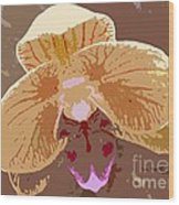 Phalaenopsis Synopsis Wood Print