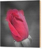 Phantom Rose Wood Print