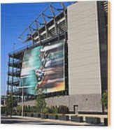 Philadelphia Eagles - Lincoln Financial Field Wood Print by Frank Romeo