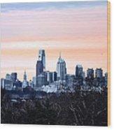 Philadelphia From Belmont Plateau Wood Print