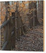Philadelphia Of Yesteryear Wood Print