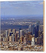 Philadelphia Wood Print by Olivier Le Queinec