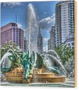 Philadelphia  Swan Fountain 1 Wood Print