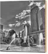 Philadelphia-swan Fountain Wood Print