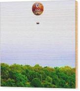 Philadelphia Zoo Balloon Over The Schuylkill River Wood Print