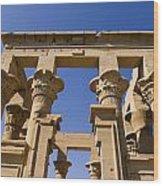 Philae Temple Egypt Wood Print