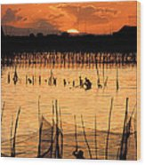 Philippines Manila Fishing Wood Print by Anonymous