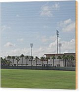 Phillies Brighthouse Stadium Clearwater Florida Wood Print