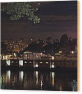 Philly Waterworks At Night Wood Print