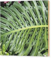 Philodendron 6 Wood Print