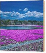 Phlox And Mt. Fuji Wood Print
