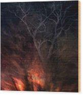 Phoenix One Wood Print