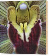 Orchid Center Wood Print