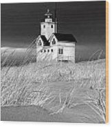 Photograph Of The Lighthouse Big Red In Holland Michigan Wood Print
