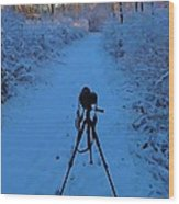 Photography In The Winter Wood Print