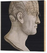 Phrenology Wood Print by Georgia Fowler
