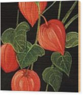 Physalis Wood Print