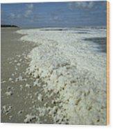Phytoplankton Bloom On Beach Wood Print