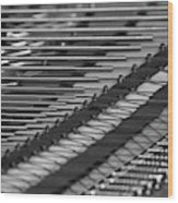 Piano Strings  Waterloo, Quebec, Canada Wood Print
