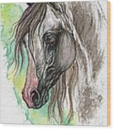 Piber Polish Arabian Horse Watercolor Painting Wood Print