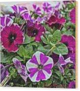 Pick Purple Wood Print