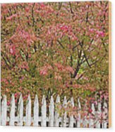 Picket Fence Fall Wood Print