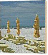 Picnic At The Beach Wood Print