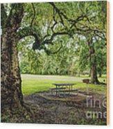 Picnic At The Park Wood Print