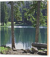 Picnic By The Lake Wood Print