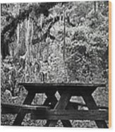 Picnic In The Woods Wood Print