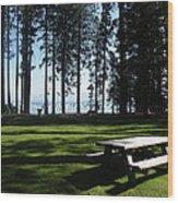 Picnic Place Wood Print