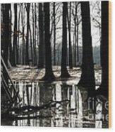 Picnic Silver Wood Print