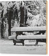 Picnic Table In The Snow Wood Print
