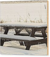 Picnic Table In Winter Wood Print