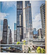 Picture Of Chicago Buildings With Willis-sears Tower Wood Print