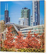Picture Of Chicago In Autumn Wood Print by Paul Velgos