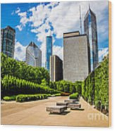 Picture Of Chicago Skyline With Millennium Park Trees Wood Print