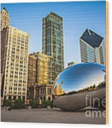 Picture Of Cloud Gate Bean And Chicago Skyline Wood Print by Paul Velgos