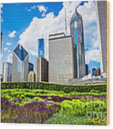 Picture Of Lurie Garden Flowers With Chicago Skyline Wood Print