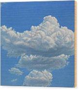 Piece Of Sky 3 Wood Print