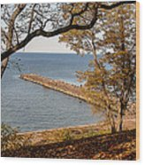 Pier In The Fall Wood Print