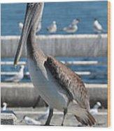Pier Brown Pelican Wood Print