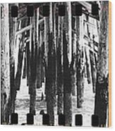 Pier Pilings Black And White Wood Print
