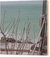 Pier Reviewed Wood Print
