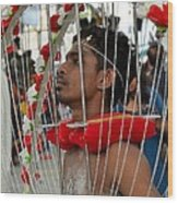 Pierced Hindu Devotee Wears Kavadi At Thaipusam Singapore Wood Print