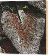 Pierced In The Heart Wood Print