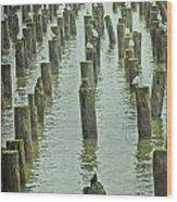 Piers And Birds Wood Print