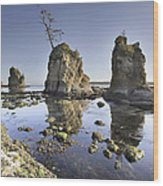 Pig And Sows Inlet In Garibaldi Oregon At Low Tide Wood Print