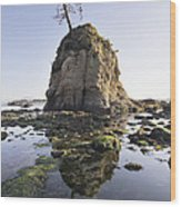 Pig And Sows Rock In Garibaldi Oregon At Low Tide Wood Print